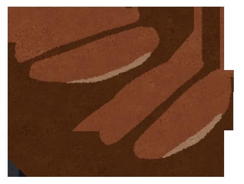 焙煎したてのコーヒー豆